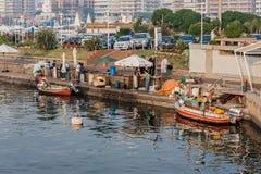Hamn Punta del Este Uruguay Royaltyfria Bilder