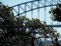 Hamnbron från parkerar royaltyfria foton