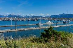 Hamnen Homer spottar, Kenai halvöAlaska Förenta staterna av Amer royaltyfria bilder