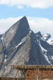 Hamnoy's mount wood and stockfish Royalty Free Stock Photo