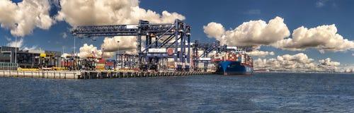 Hamnplats för Haynes Dock behållarelast, portbotanik royaltyfria bilder