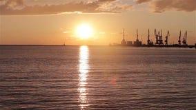 Hamnstad kranar i hamnstaden på solnedgången, stor hamnstad på solnedgången lager videofilmer