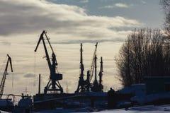 Hamnstaden sträcker på halsen på den soliga vinterdagen, konturer Arkivfoto