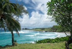 Hamoa Beach near Hana on Hawaiian island of Maui Royalty Free Stock Photos