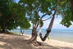 Hamock on beach ,Samui island,Thailand Stock Images
