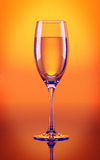 Сhampagne glass in orange. A glass of champagne on orange background Stock Photography