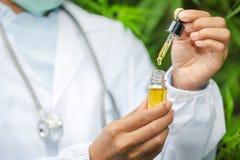 Hampaolja , Handinnehavflaska av cannabisolja mot marijuanav?xten, CBD-oljapipett arkivbilder