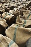 Hampasäckar som innehåller ris Fotografering för Bildbyråer