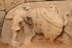 Hampi bas relief Royalty Free Stock Images
