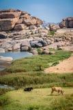 Hampi landscape Royalty Free Stock Photos