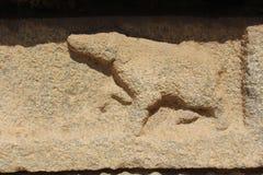 Hampi Vittala świątyni ściany cyzelowanie dziwaczny zwierzę lubi hieny Obraz Royalty Free