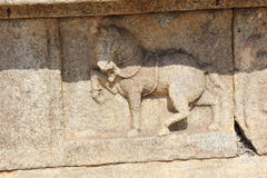 Hampi Vittala Temple wall carving of a decorated horse marching. This is a Wall carving of a decorated horse marching. This carving in the Hampi Vittala Temple Stock Images