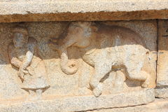 Hampi Vittala Temple wall carving of man displaying his decorated male elephant for trade. This is a wall carving of man displaying his decorated male elephant royalty free stock photos