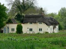 Hampshire thatched cottage. Hampshire thatched cottage on River Test royalty free stock photo