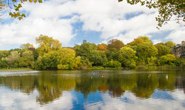 Hampstead热在秋天 免版税图库摄影