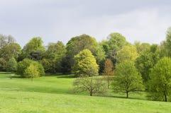 Hampstead hed nära det Kenwood huset Hampstead London UK arkivbild