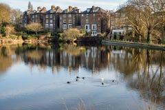 HAMPSTEAD, LONDON/UK - 27 ΔΕΚΕΜΒΡΊΟΥ: Υπόλοιπος κόσμος των σπιτιών από μια λίμνη Στοκ Εικόνες