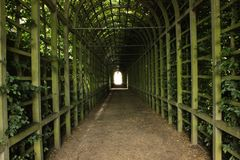 Hampton Court. Tunnel garden in London UK Stock Photos