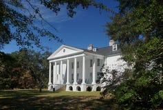 Hampton Plantation Lizenzfreies Stockbild