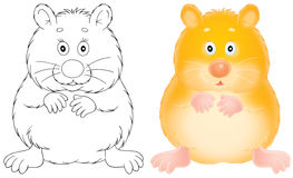 hamster vektor illustrationer
