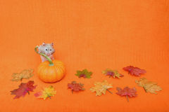 Hamster Behind Pumpkin Stock Photography