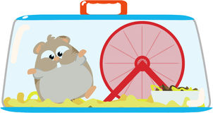 Hamster in cage Royalty Free Stock Images