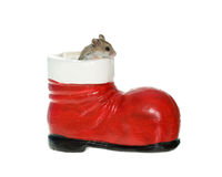 Hamster coming out of a Santa Boot Decoration. Tiny little brown hamster or mouse coming out of a santa boot, isolated on white Stock Photo