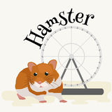 Hamster d'animal domestique, pictogrammes d'isolement d'illustration de vecteur Photo libre de droits