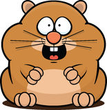 Hamster de bande dessinée heureux Photos stock