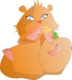 Hamster, der Karotte essend liegt Stockbild