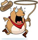 Hamster do rodeio ilustração royalty free