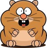 Hamster dos desenhos animados feliz Fotos de Stock