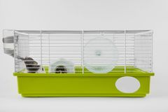 Hamster is drinking in cage on white Royalty Free Stock Photo