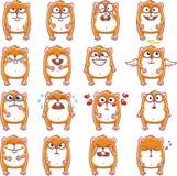 Hamster engraçados (2) Imagens de Stock Royalty Free