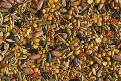 Hamster fodder texture. Texture of hamster fodder: peanuts, sunflower seeds and other royalty free stock image