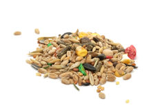 Hamster Food Mix Stock Image