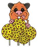 Hamster holding many candys Stock Photo
