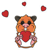 Hamster holding a red heart Stock Images