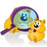 Hamster and magnifying glass Stock Photos