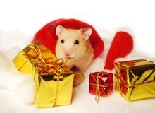 Hamster met de giften van Kerstmis. Stock Afbeeldingen