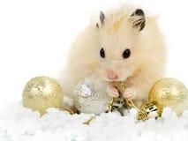 Hamster met Kerstmisspeelgoed Stock Foto