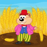 Hamster near wheat field Royalty Free Stock Images