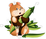 Hamster peas character cartoon style  illustration white Stock Photography