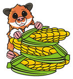 Hamster peek up from corns Stock Photo