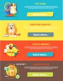 Hamster, perroquet, chat et chien Photo libre de droits