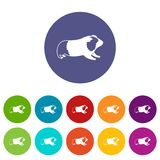 Hamster set icons Stock Photos