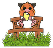 Hamster sitting on a bench and eating Royalty Free Stock Photo