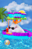 Hamster on summer holidays Royalty Free Stock Photo