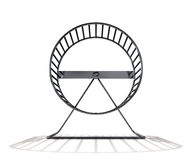 Hamster Wheel Empty Stock Image