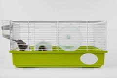 Hamstern dricker i bur på vit Royaltyfri Foto